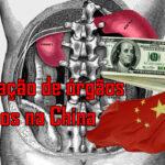 A Extração Forçada e Macabra de Orgãos Humanos na China. [com video]